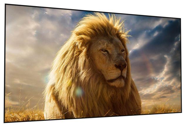 160x100 cm formato 16:10 Schermo a cornice rigida Leonardo